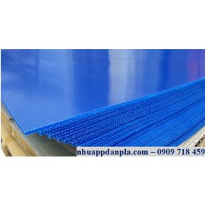 Tấm nhựa pp 5mm xanh tím