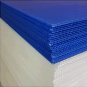 Tấm nhựa pp 4mm xanh tím
