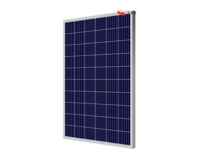 Tấm pin năng lượng mặt trời Poly PSP-260W