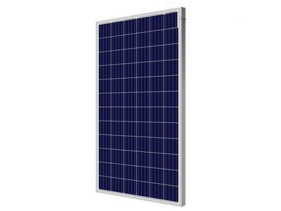 Tấm pin năng lượng mặt trời Poly PSP-325W