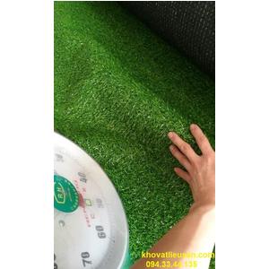 THẢM CỎ NHÂN TẠO 2,5cm FLGrass