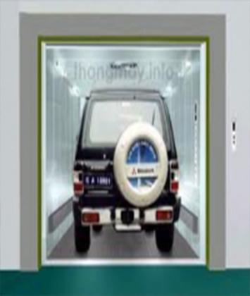 Thang tải ô tô D02