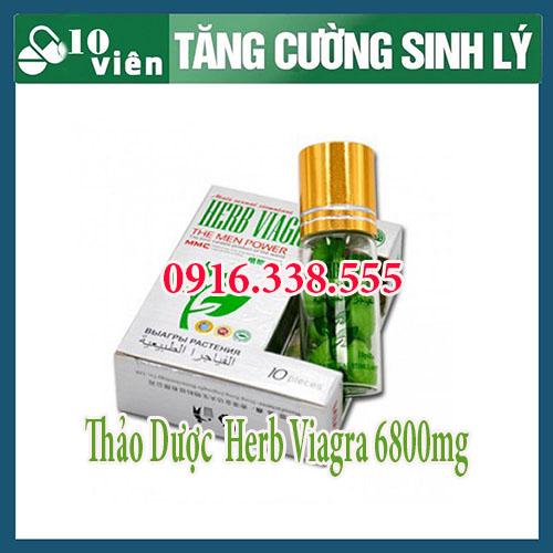 Thảo dược cường dương Herb Viagra 6800mg mua o dau