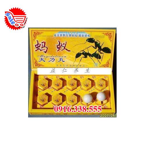 Kiến Càng Đen Tây tạng -thảo dược tự nhiên ma yi da li wan
