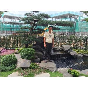 Thi công sân vườn mẫu SV27
