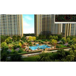 Thiết kế thi công hồ bơi, gạch 3d, sân vườn
