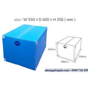 Thùng carton nhựa 06