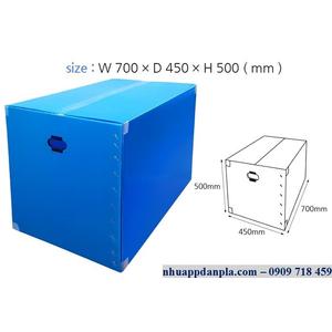 Thùng carton nhựa 10