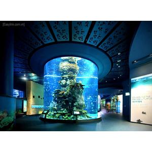 Vé Thủy Cung Singapore Sea Aquarium - Vé tham quan