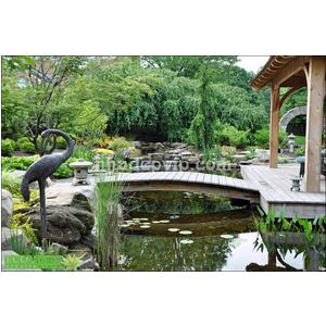 Tiểu cảnh sân vườn mẫu SV11