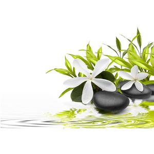 Tranh dán tường về Hoa