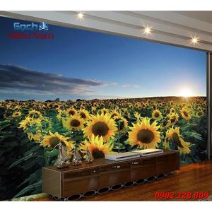 Tranh gạch 3d Hoa Hướng Dương HHD36