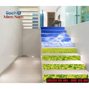 Tranh gạch 3d ốp bậc cầu thang BCT90