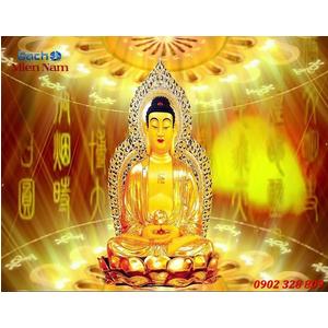Tranh Phật Thich Ca Mau Ni HP432