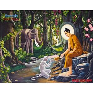 Tranh Phật Thich Ca Mau Ni HP521