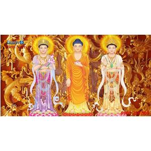 Tranh Tam Thế Phật HP01