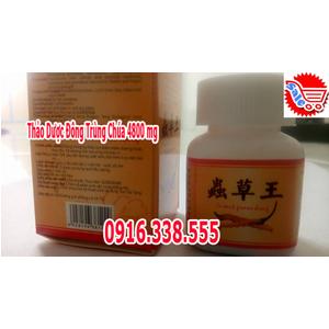 Thảo Dược Đông Trùng Chúa 4800 mg Sản phẩm cương dương Bổ thận