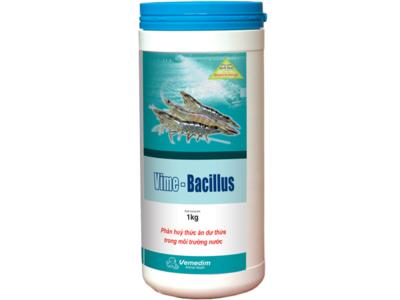 VIME- BACILLUS