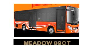 Xe city bus - Meadow 89CT