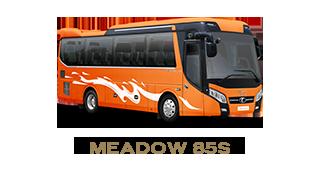 Xe ghế ngồi - Meadow 85S