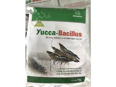 YUCCA-BACILLUS