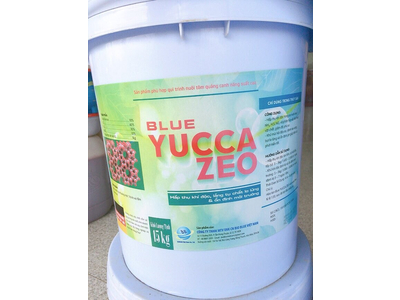 Blue Yucca Zeo