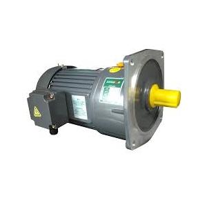 Z-Series Helical Gear Motor