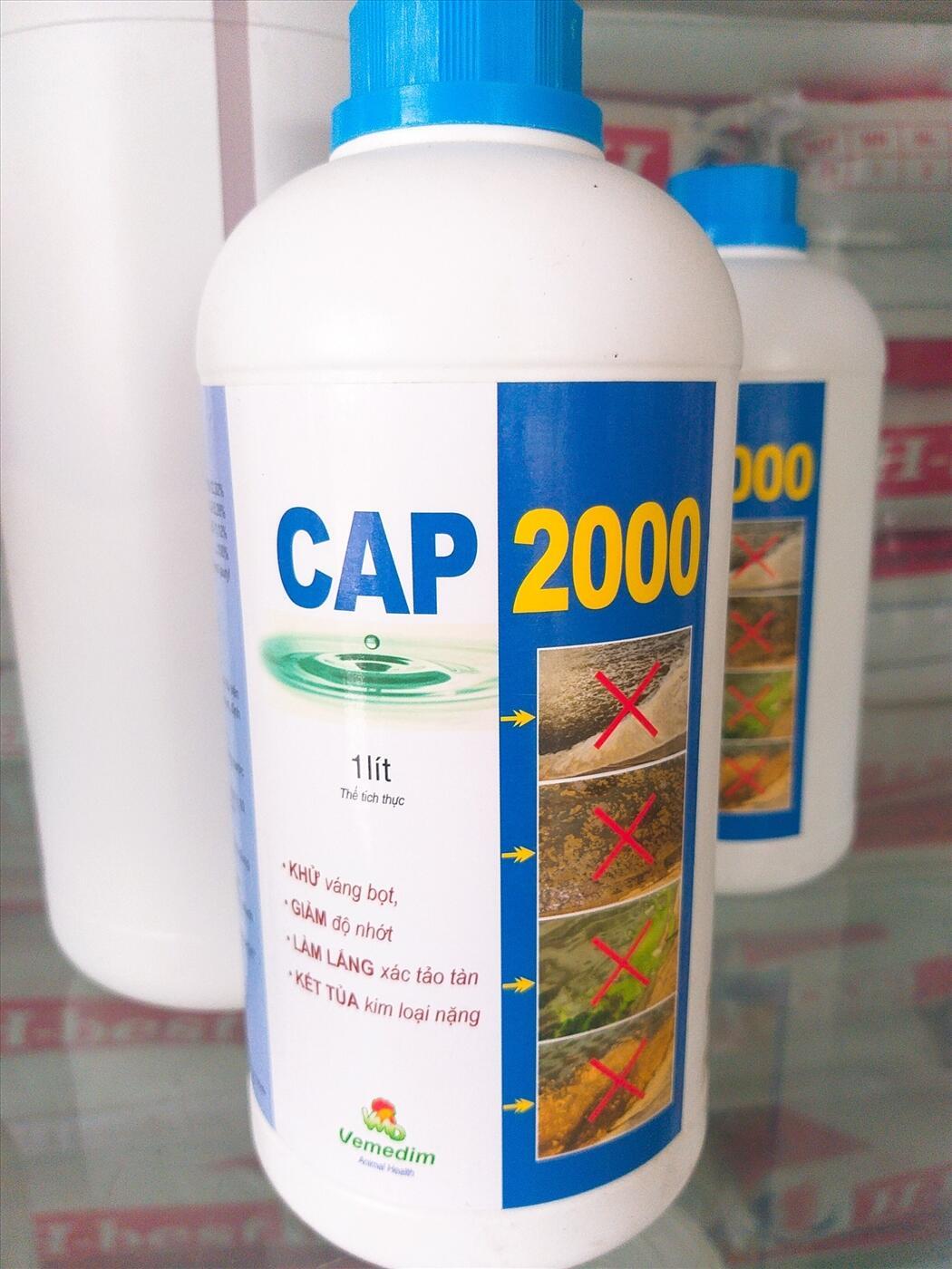 CAP 2000