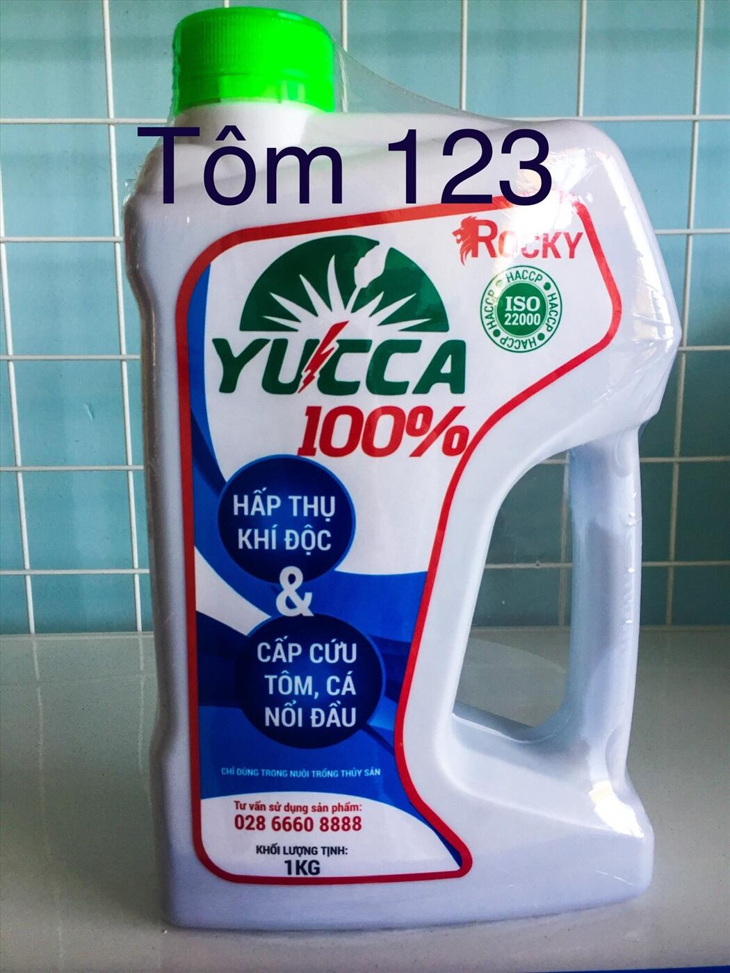 YUCCA 100%